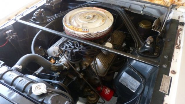 06-1965-ford-mustang-shelby-gt350-engine