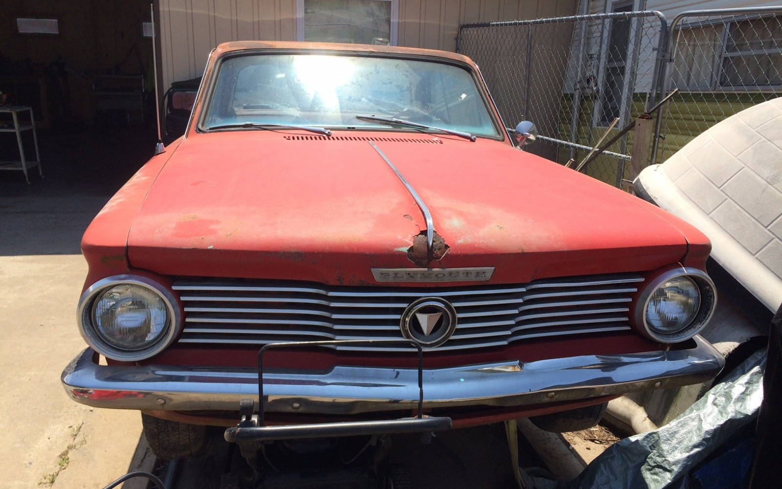 BF Exclusive: 1964 Plymouth Valiant Signet