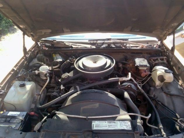 061516 Barn Finds - 1985 Chevrolet Monte Carlo - 5
