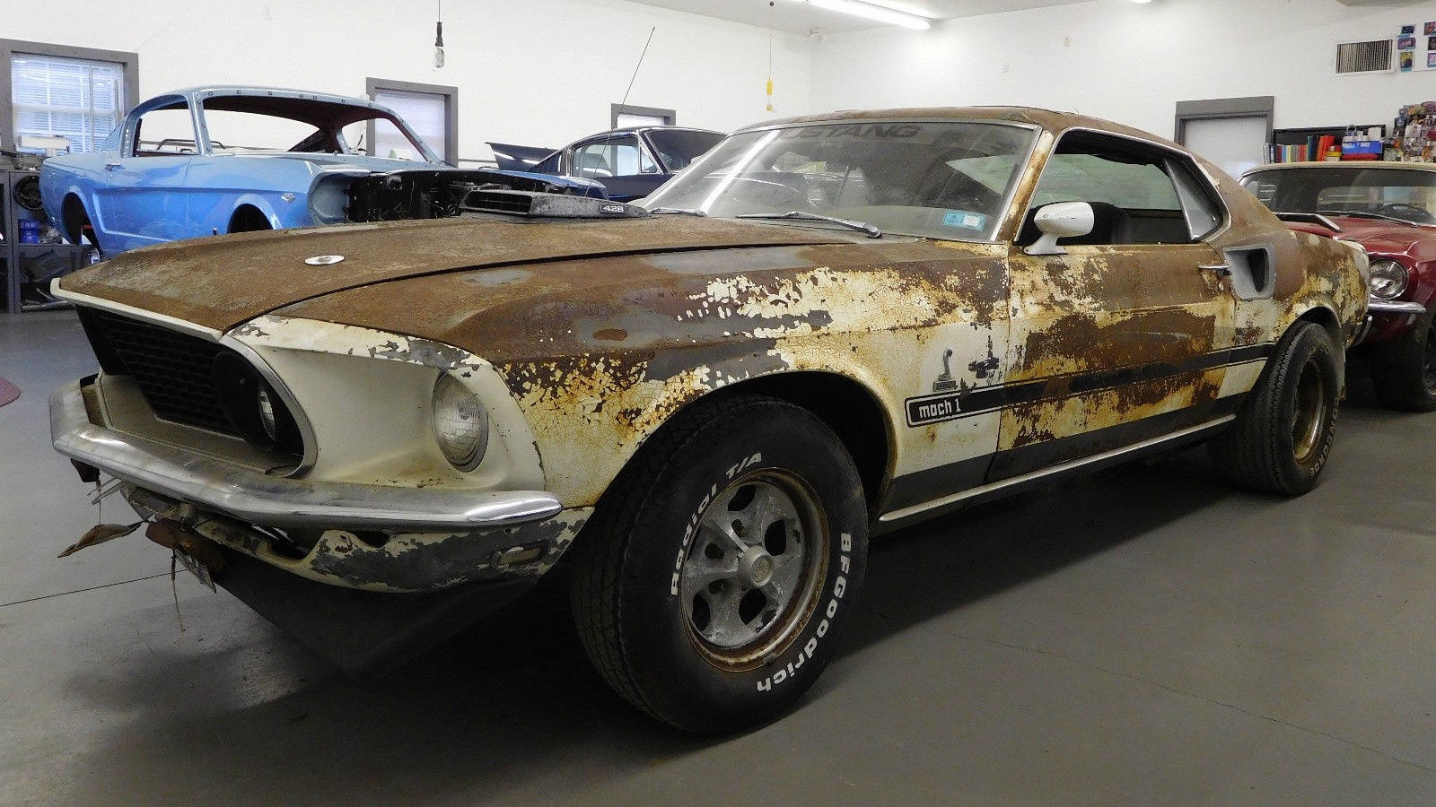 Project Muscle Cars For Sale >> Rusty Snake: 1969 Mustang Mach 1
