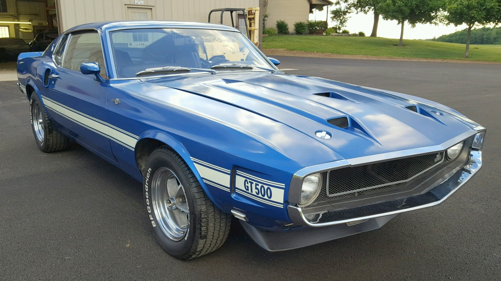 Original Mustang Shelby >> BF Exclusive: 1969 Shelby GT500