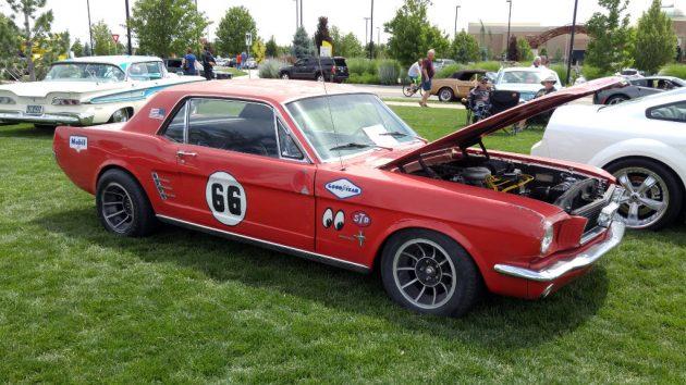 Mustang Survivor