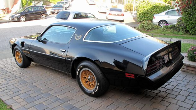 Trans Am Tail
