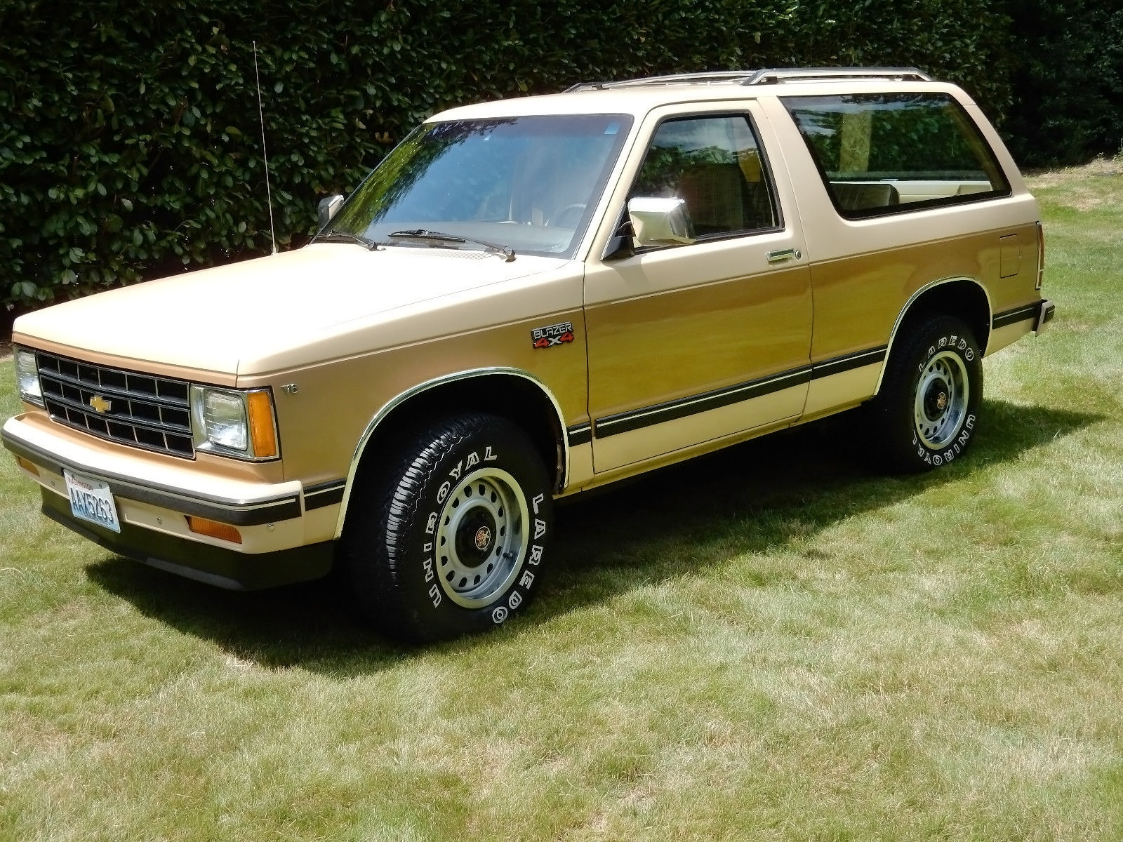 original with 23 844 miles 1983 chevy s 10 blazer. Black Bedroom Furniture Sets. Home Design Ideas