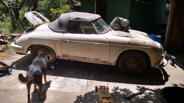 Gone To The Dogs: 1960 Porsche 356