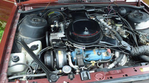 chevyx11b