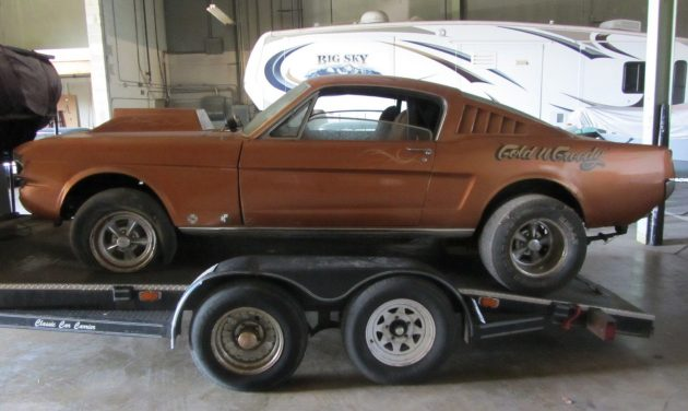 Gold N Greedy 1966 Ford Mustang Gasser