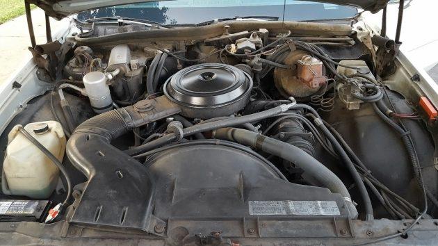 081016 Barn Finds - 1979 Chevrolet Impala Wagon - 5