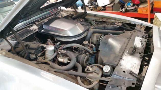 1979 Pontiac Trans AM Engine