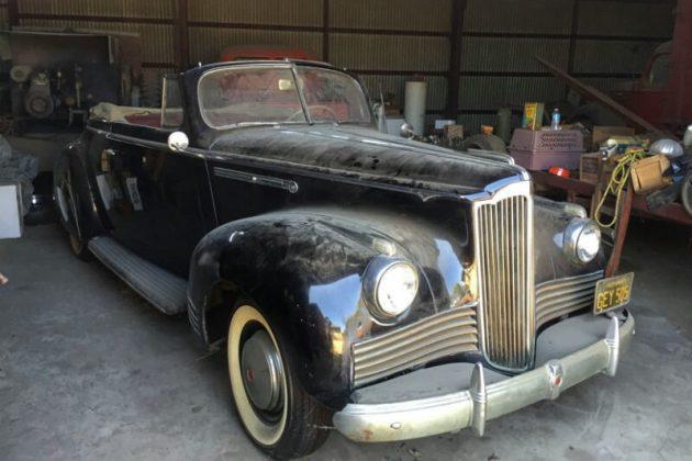 Packard Survivor