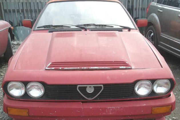 Worth The Risk? 1984 Alfa Romeo GTV