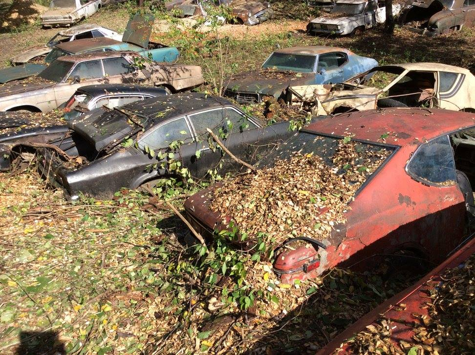 Forgotten Wrecking Yard Liquidation!