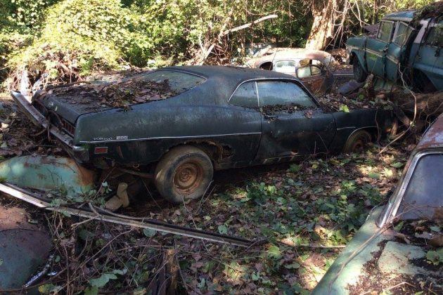 Old Junk Cars For Sale >> Forgotten Wrecking Yard Liquidation!