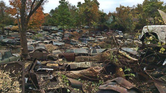 Wrecking Yard Liquidation Update!