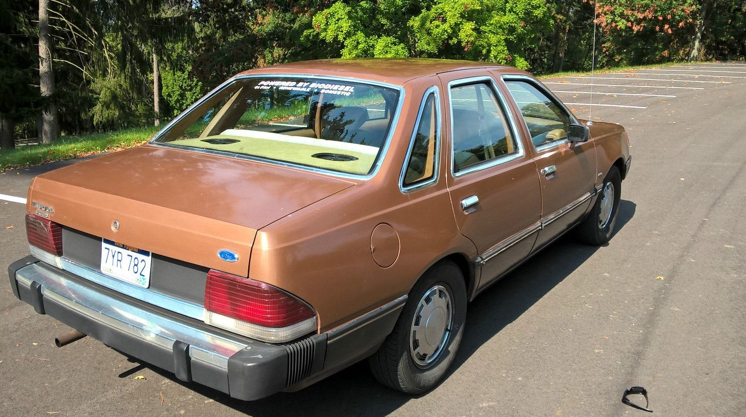 Biodiesel Equipped  1984 Ford Tempo Survivor