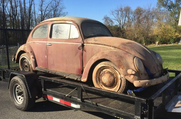 Rough Oval: 1958 VW Beetle