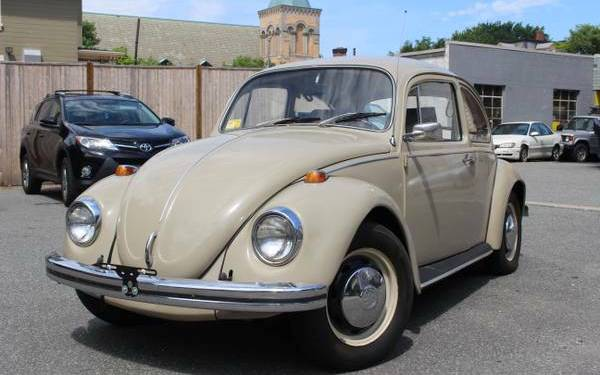 1969-beetle-survivor