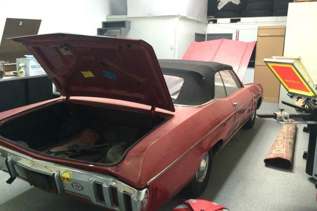 70-impala-3