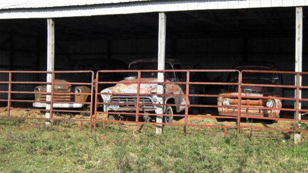 corralled-1957-chevy-truck
