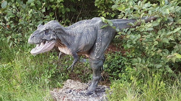 david-ws-t-rex
