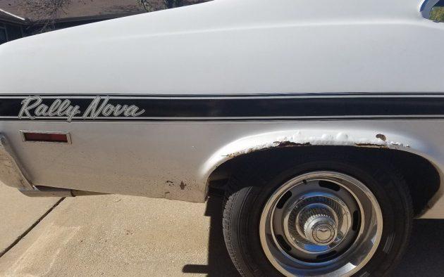 rally-nova-stripe