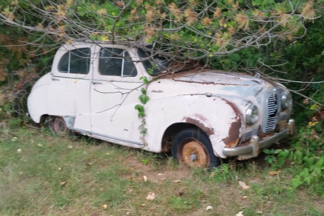 Dragged From The Treeline: $350 1954 Austin A40 Somerset