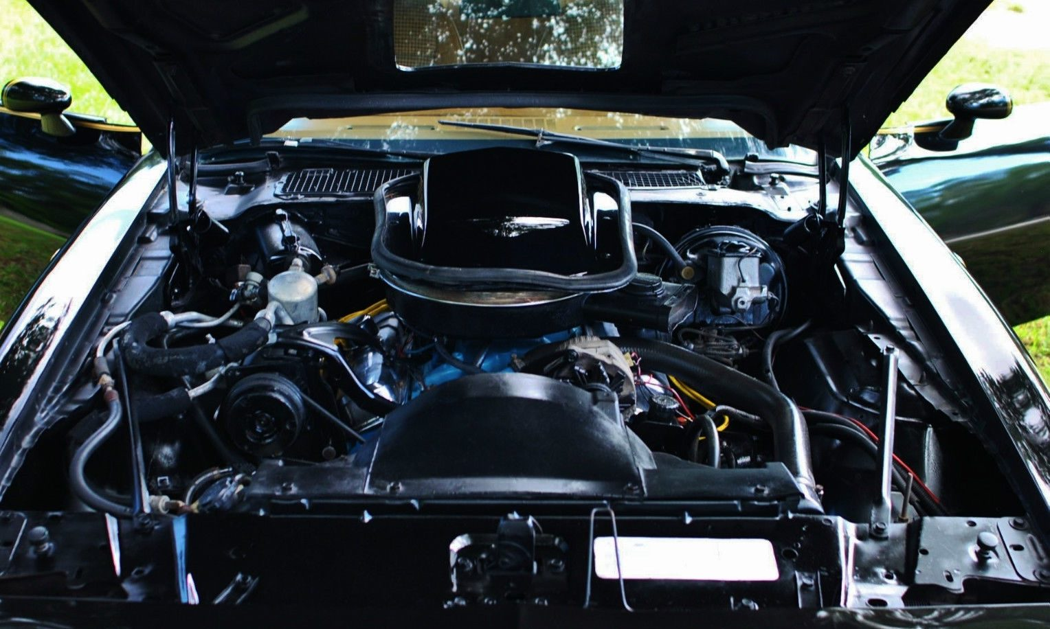 Factory Air 1979 Pontiac Trans Am Big Block Engines The Seller Points Out That 66l Is Beautifully Detailed And It But Id Like To Know A Bit More About Its Maintenance History Before I