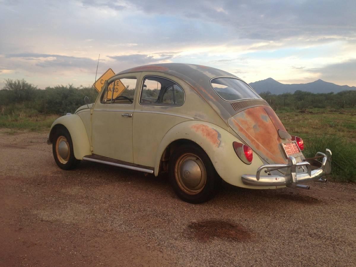 Desert Bug: 1963 Beetle