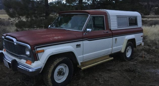 Landscape Sold Separately: 1979 Jeep J-10