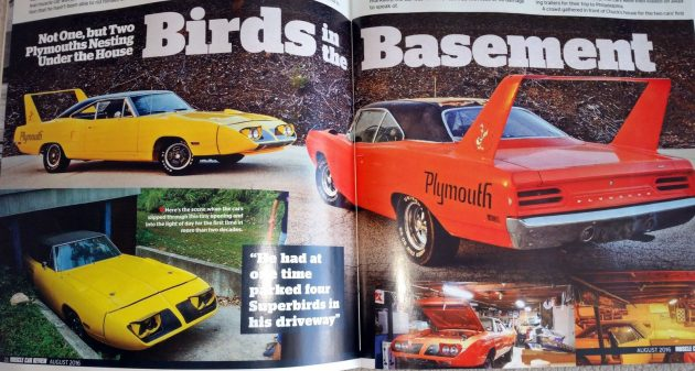 birds-in-the-basement