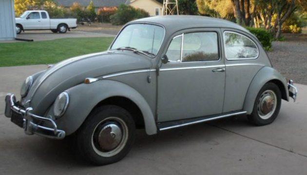 Little Brown Bug: 1966 VW Beetle
