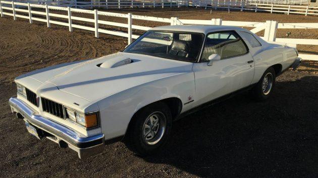 Missing Stripes? 1977 Pontiac LeMans Can Am