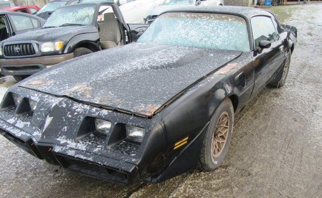 Junk Yard Find: 1981 Pontiac Trans Am