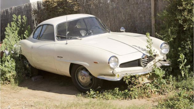 Saved By The Clutch: 1965 Alfa Romeo Giulia SS