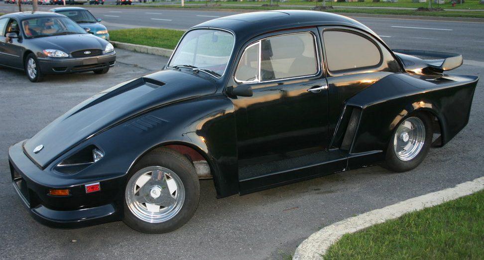Chia Pet Bug Vw Beetle Porsche 930 Kit