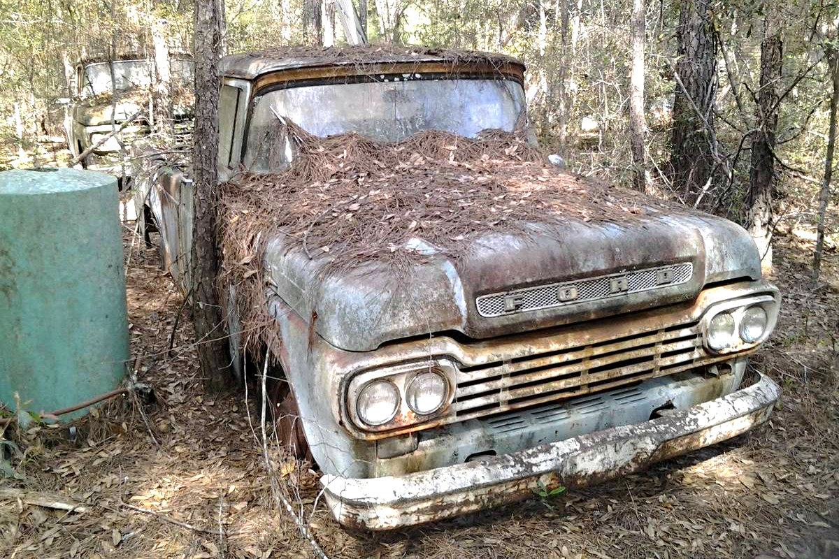 All Natural 1959 Ford F100