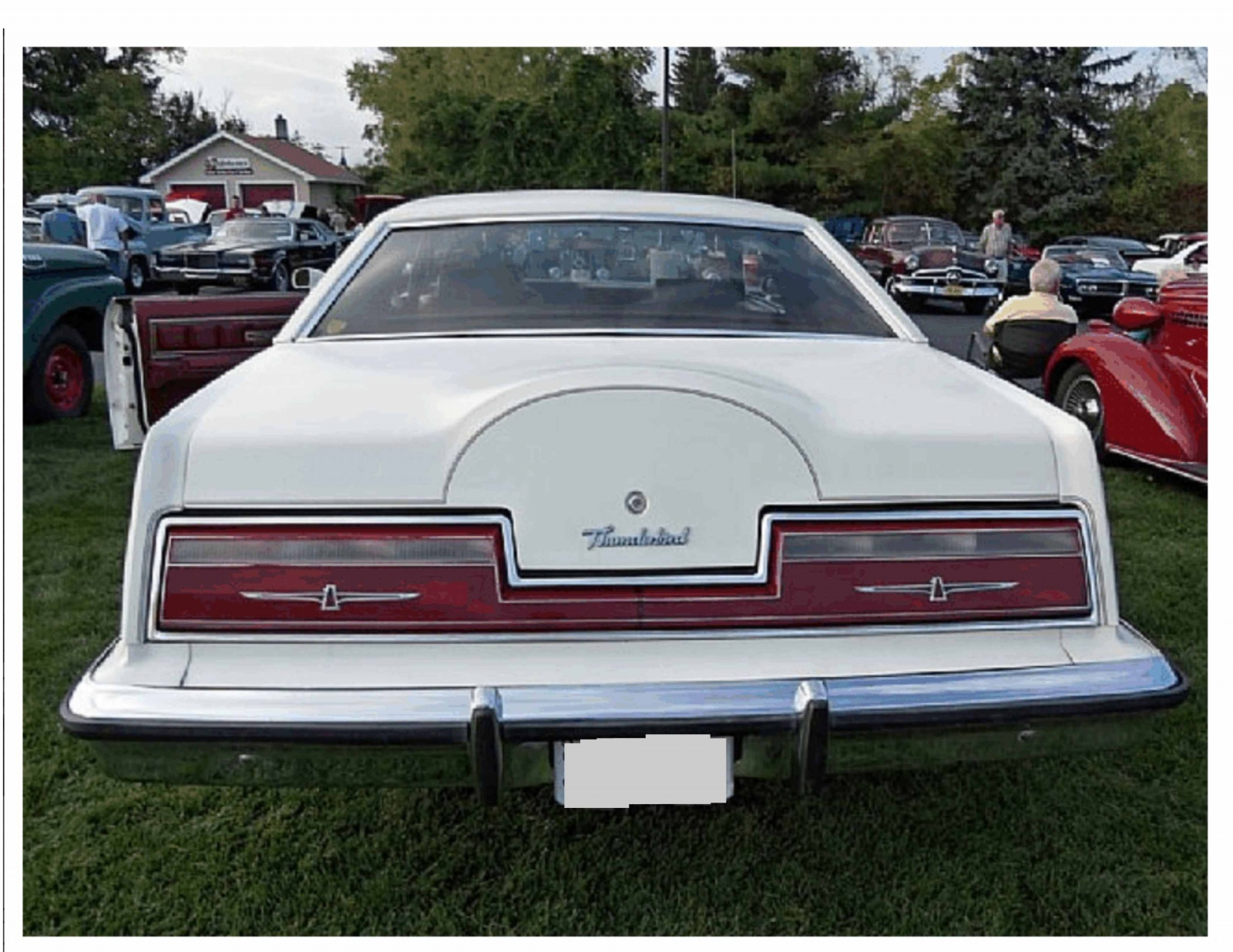 One Owner Survivor 1979 Ford Thunderbird