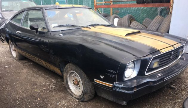 Project Potential At Everett's: Mustang Cobra II