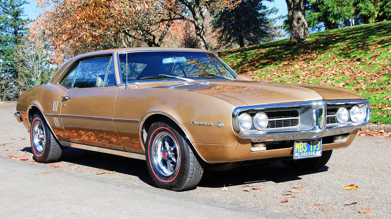 One Hot Bird: 1967 Pontiac Firebird HO