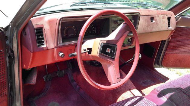 Long Bed Diesel: 1982 Isuzu P'up DLX