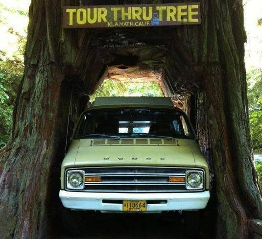 Tour-Thru Pop-Up: 1975 Dodge B300 Pop-Up Camper