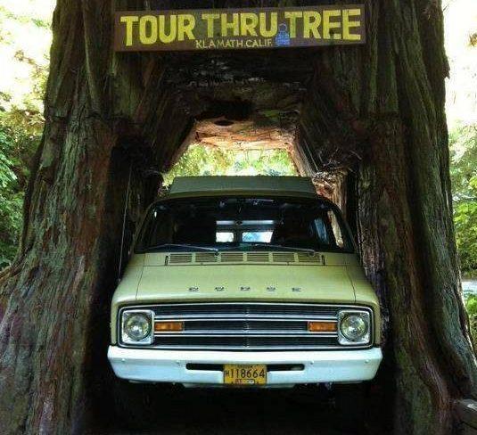 Tour-Thru Pop-Up: 1975 Dodge B300 Pop-Up Camper