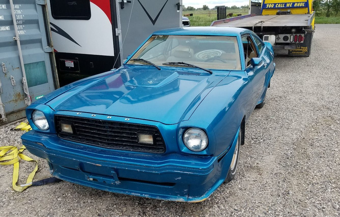 Low Reserve 1978 Ford Mustang King Cobra