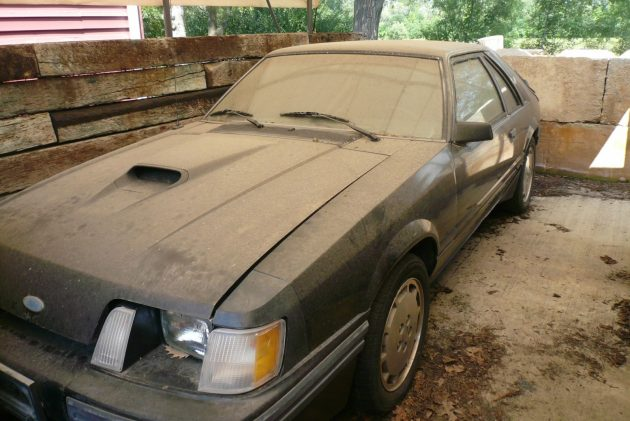 Bf Auction 1984 Ford Mustang Svo