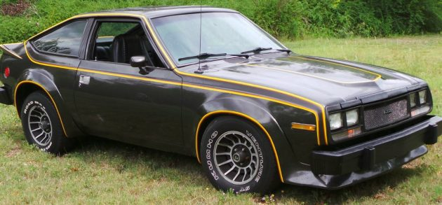 Turbines And Flares 1979 Amc Amx