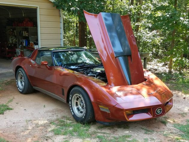 Dark Bronze Bombshell: 1981 Chevrolet Corvette