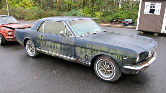 Swamp 'Stang: 1966 Ford Mustang GT
