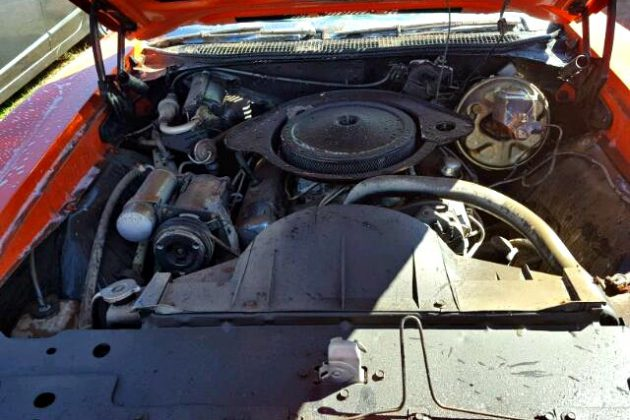 Texas Car Barn >> Judge Dread: 1969 Pontiac GTO