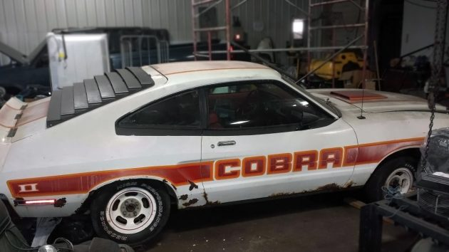 Cheap Cobra 1978 Ford Mustang Ii Cobra