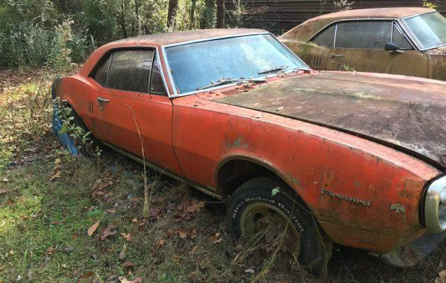 A Squirrelly Situation: 1967 Pontiac Firebird